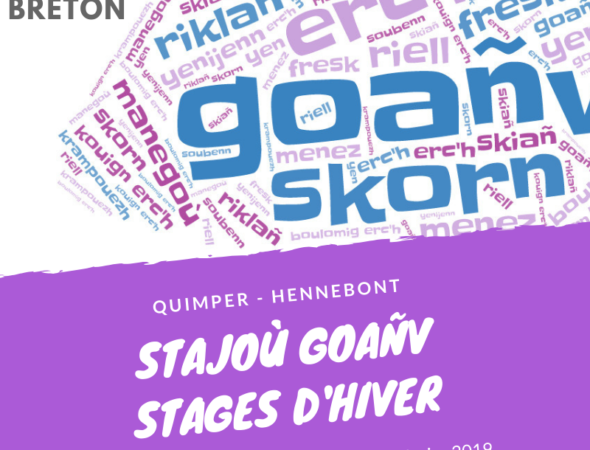 Stages courts hiver 2019