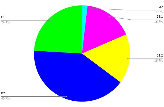 Excellents résultats des stagiaires de Roudour cette année au Diplôme de Compétences en Langue (DCL)