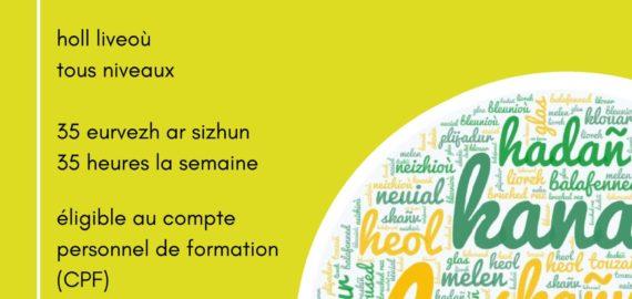 Vacances de Printemps : participez à nos stages tous niveaux à Lesneven, Quimper et Hennebont !