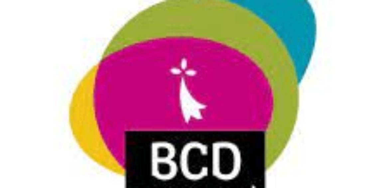 Responsable de la promotion, valorisation et diffusion des productions Bretagne Culture Diversité (CDI)